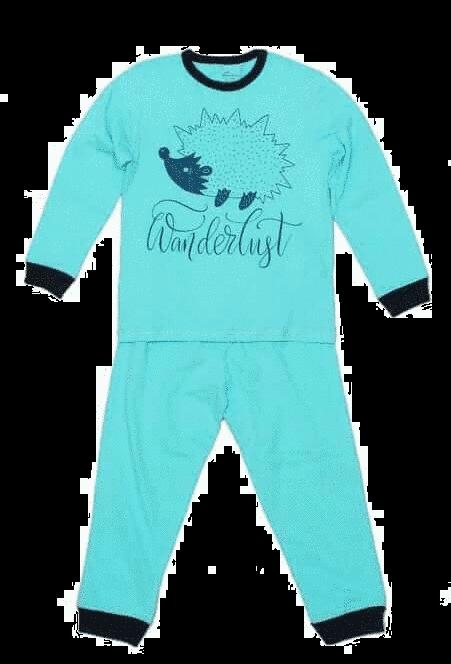 """Pijama Bebe, Cu Maneca Lunga, Bleu Aqua, """"arici"""""""